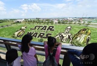 img_9青森県田舎館村で、田んぼに描かれたスター・ウォーズのキャラクターを見る人々.jpg